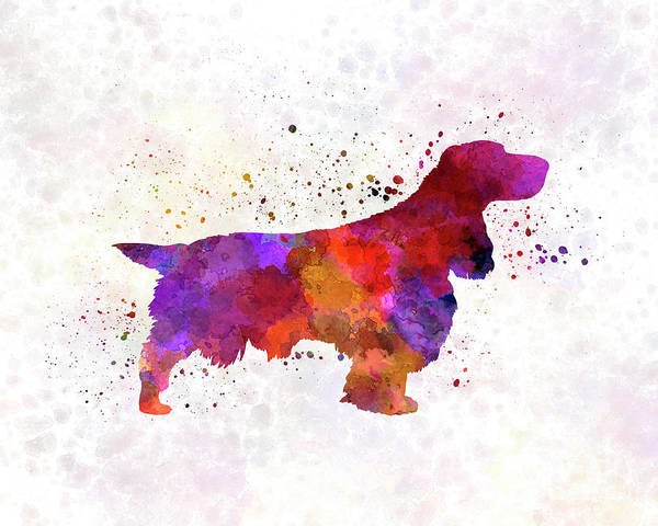 Field Spaniel Painting - Field Spaniel In Watercolor by Pablo Romero