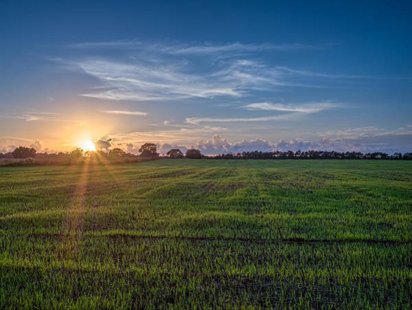 Photograph - Field Sunset by Brad Boland
