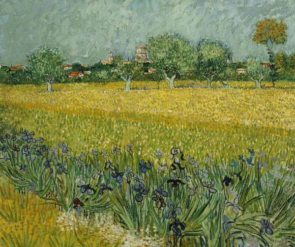 Painting - Field With Flowers Near Arles by Vincent van Gogh