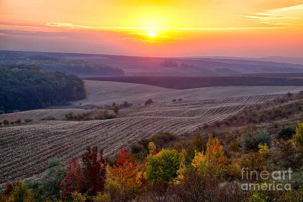 Moldova Wall Art - Photograph - Fields Of Autumn by Gabriela Insuratelu