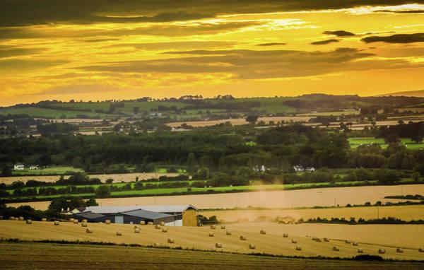 Gleeson Photograph - Fields Of Gold by Fergal Gleeson