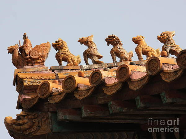 Photograph - Fierce Guardians Of The Forbidden City by Carol Groenen