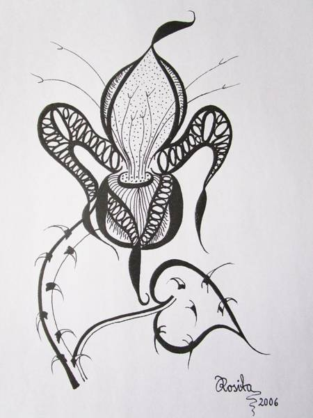 Drawing - Fierce by Rosita Larsson