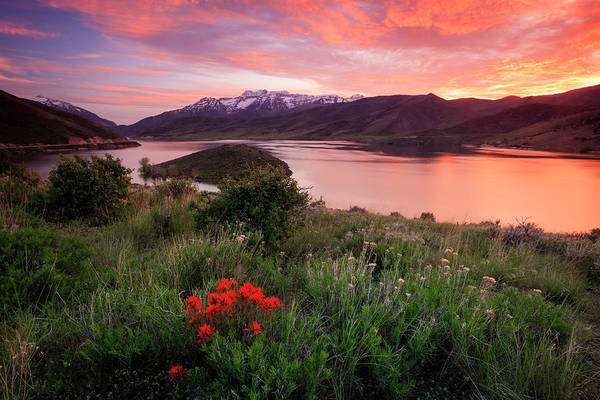 Wall Art - Photograph - Fiery Deer Creek Sunset With Wildflowers. by Johnny Adolphson