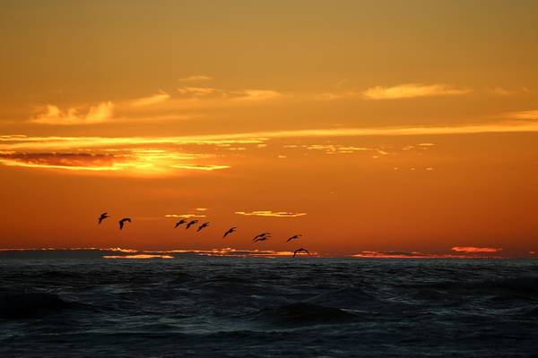 Photograph - Fiery Ocean Sunset - 3 by Christy Pooschke