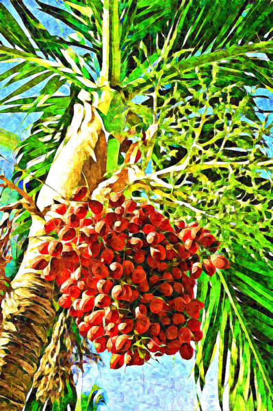 Photograph - Fiery Red Tropical Fruits by Tatiana Travelways