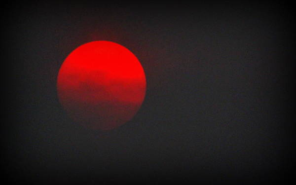 Photograph - Fiery Sun by AJ Schibig
