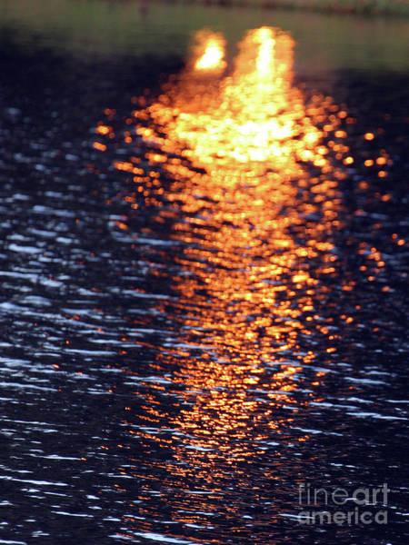Photograph - Fiery Sunglade On Hampton Hall Lagoon by Rick Locke