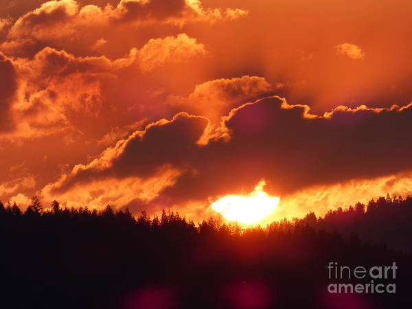 Photograph - Fiery Sunset 1 by Charles Robinson