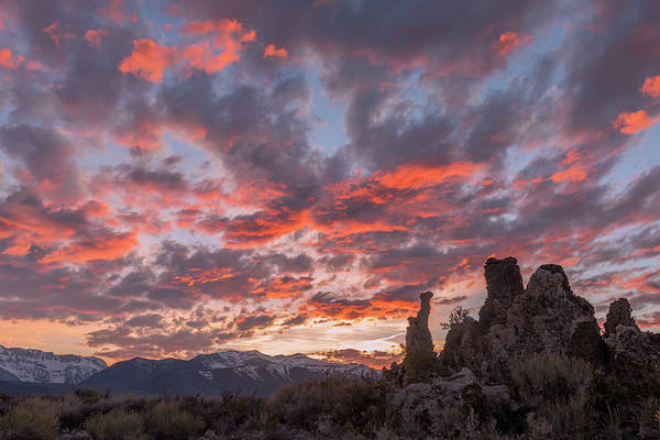 Photograph - Fiery Sunset At Mono Lake by Loree Johnson