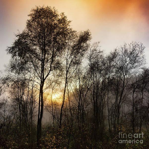 Wall Art - Photograph - Fiery Sunset by Janet Burdon