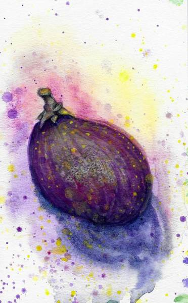 Painting - Fig by Ashley Kujan