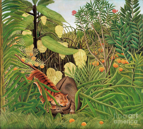 Wall Art - Painting - Fight Between A Tiger And A Buffalo 1908 By Henri Rousseau by Art Anthology