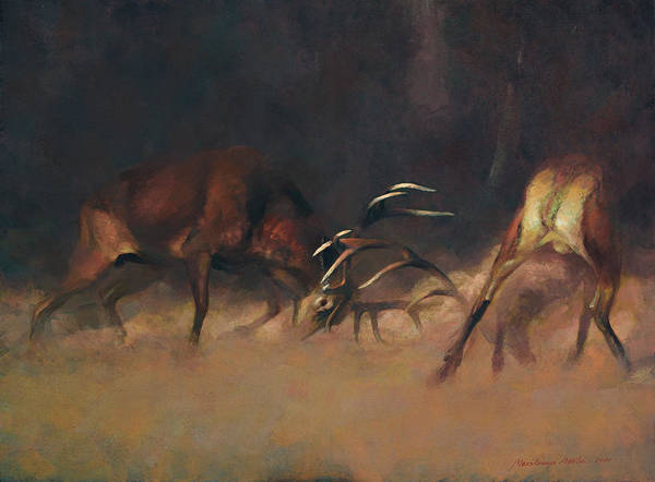 Fighting Stags I. Art Print