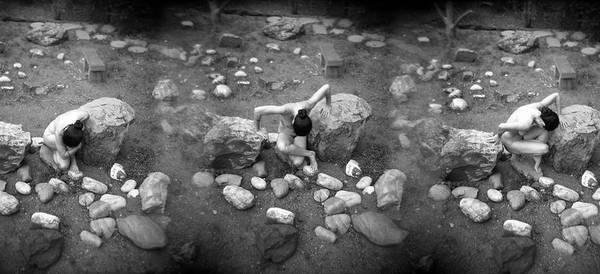 Photograph - Figurative Holga Tryptich 3 by Catherine Sobredo