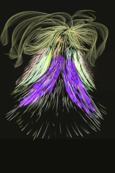 Digital Art - Figure #g4 by Leif Sohlman