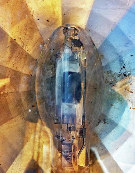 Photograph - Filamentus by Matt Cegelis
