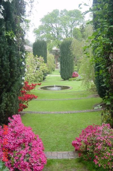 Filoli Photograph - Filoli Gardens by Shelley Capovilla