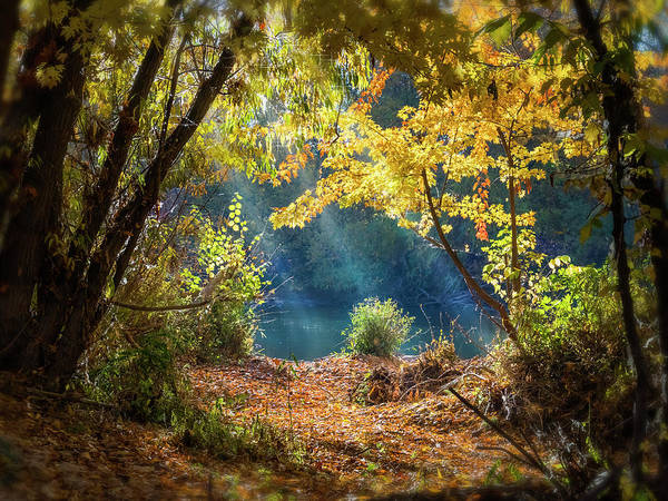 Photograph - Filtered Light 3 by Mark Mille