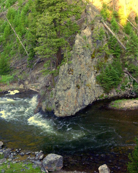 Firehole River Wall Art - Photograph - Fin On The Firehole by Marty Koch