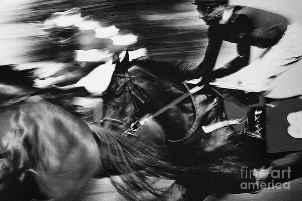 Photograph - Final Elan Horse Competition by Dimitar Hristov