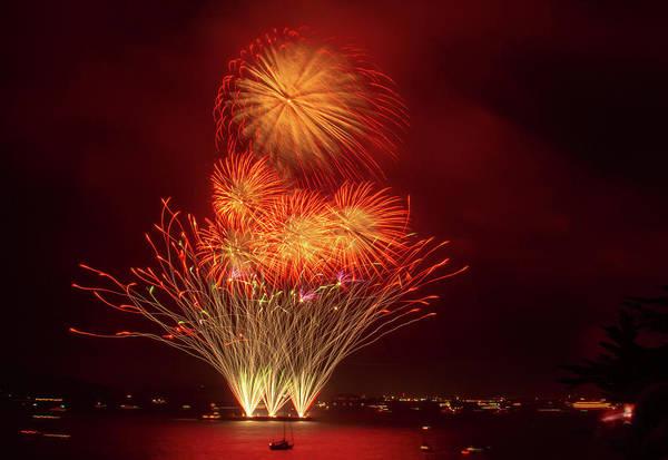 Photograph - Finale Sunflower Fireworks by Bonnie Follett
