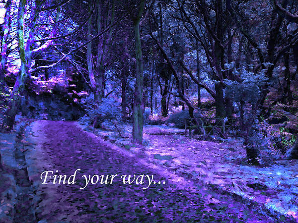 Photograph - Find Your Way 2 by Laura Greco