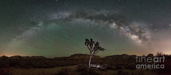 Strobist Wall Art - Photograph - Finding Joshua Tree Milky Way Panorama by Michael Ver Sprill