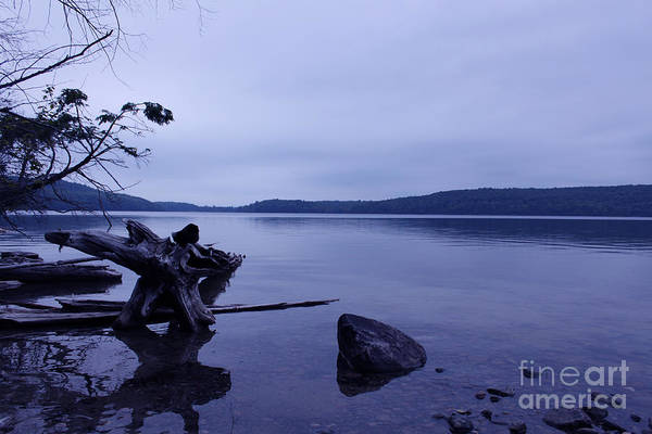 Photograph - Finding Solitude by Cathy Beharriell