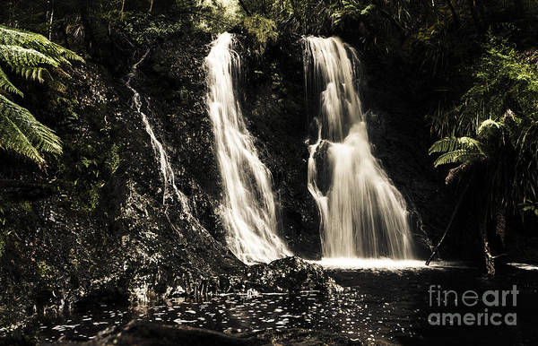 Gully Photograph - Fine Art Landscape Of A Rainforest Waterfall by Jorgo Photography - Wall Art Gallery
