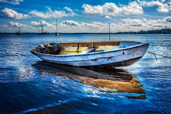 Photograph - Fine Blue Morning by Debra and Dave Vanderlaan
