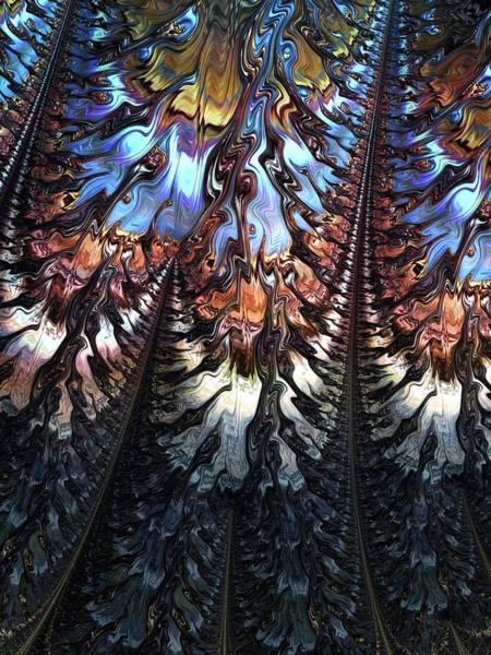 Wall Art - Digital Art - Fine Feathers by Amanda Moore