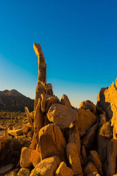 Photograph - Finger Rock, Joshua Tree, Sunset by TM Schultze