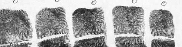 Photograph - Fingerprints Of Vincenzo Peruggia, Mona by Photo Researchers