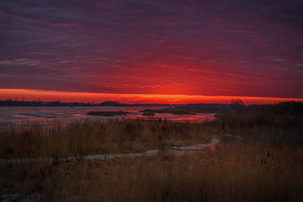 Photograph - Fire And Ice by Susan Rissi Tregoning