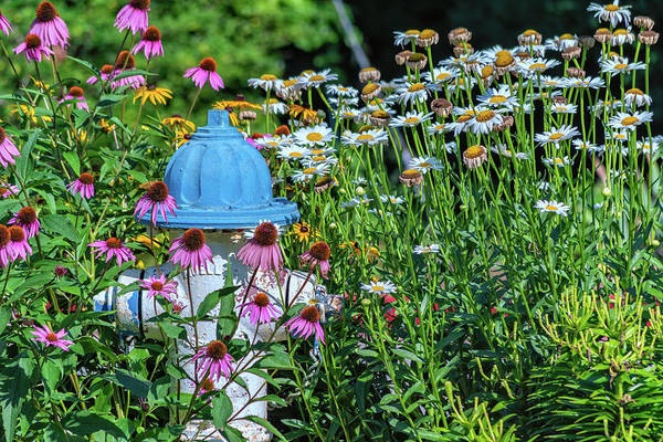 Photograph - Fire Hydrant Flowers by Jim Shackett