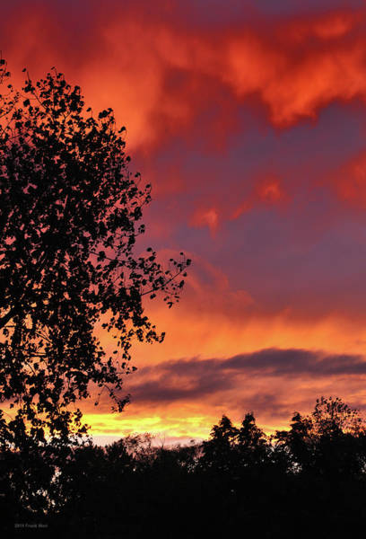 Photograph - Fire In The Sky 2 by Frank Mari