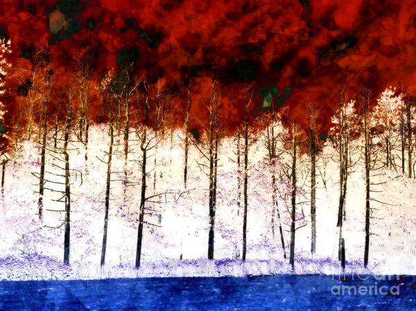 Photograph - Fire In The Sky by Marcia Lee Jones