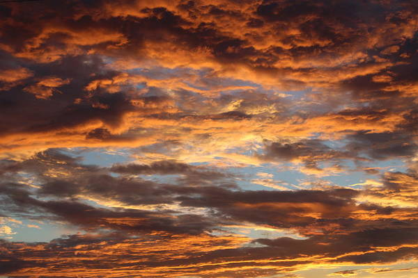 Wall Art - Photograph - Fire In The Sky by Weathered Wood