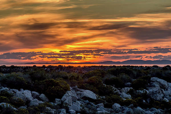 Photograph - Fire In The Sky by Teresa Wilson
