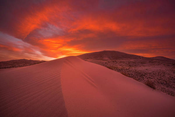 Photograph - Fire Over Kelso Dunes by Thomas Gaitley