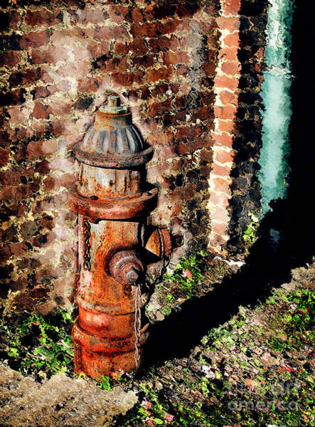 Water Hydrant Photograph - Fire Plug by Colleen Kammerer