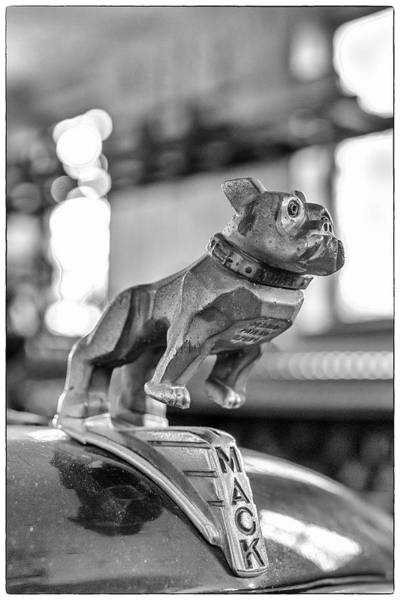 Photograph - Fire Truck Hood Ornament by Patricia Schaefer