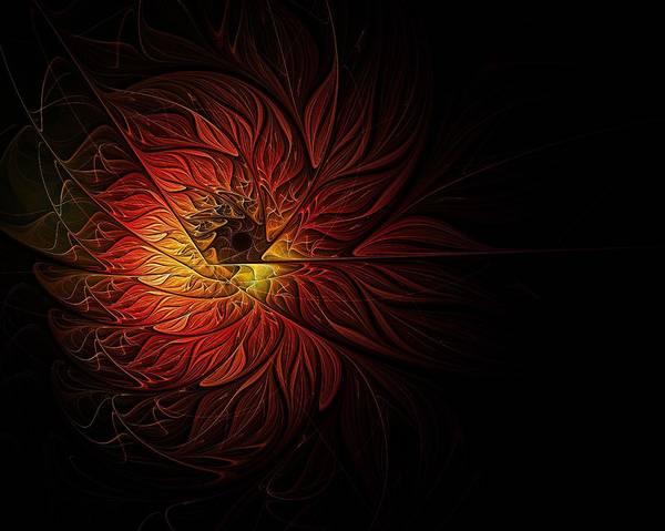 Wall Art - Digital Art - Fireball by Amanda Moore