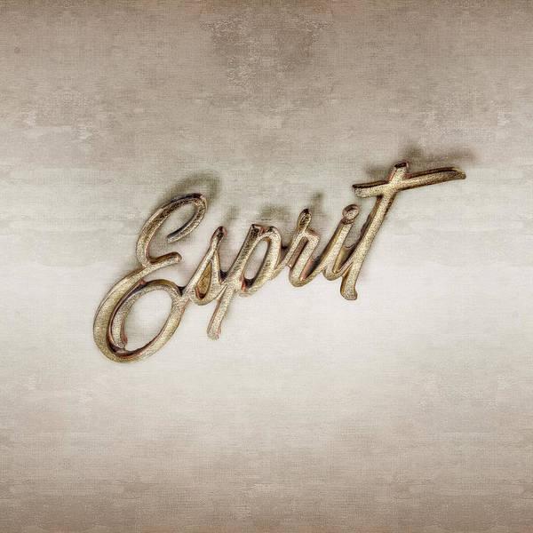 Wall Art - Photograph - Firebird Esprit Chrome Emblem by YoPedro