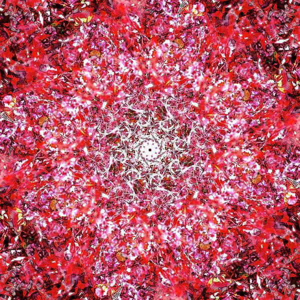Digital Art - Firecracker by Frans Blok