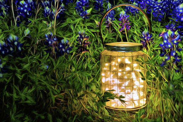 Photograph - Fireflies And Bluebonnets by JC Findley