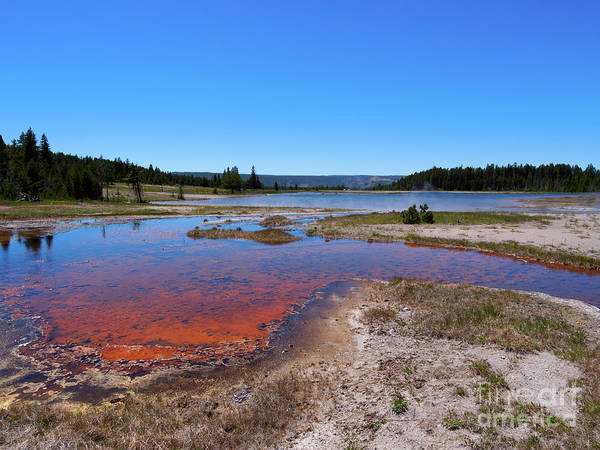 Wall Art - Photograph - Firehole Lake In Yellowstone National Park by Louise Heusinkveld