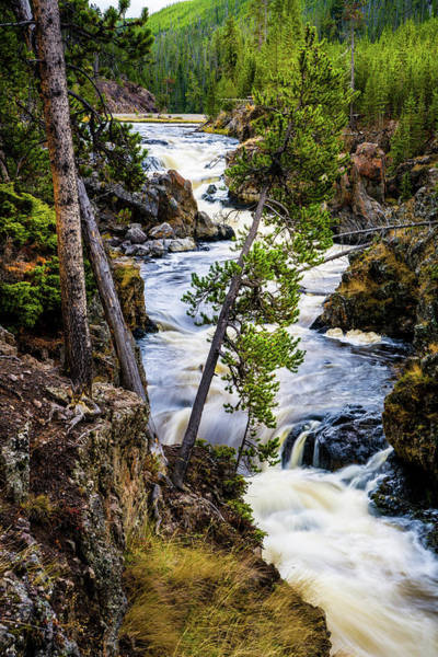 Photograph - Firehole River Cascades Vertical by TL Mair