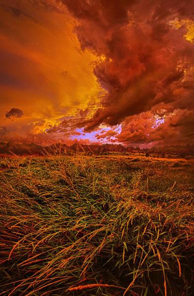 Photograph - Firelight by Phil Koch